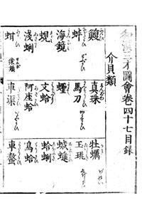 sansai-47-02.jpg