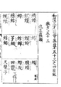 sansai-53-02.jpg