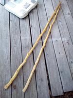 アカザの杖は丈夫で軽い